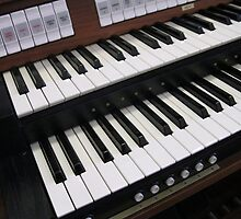 Rows of Keys - Section of Organ Keyboard by kathrynsgallery