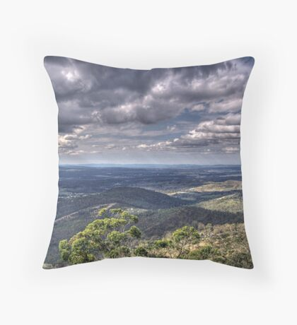 Picnic Point. Throw Pillow