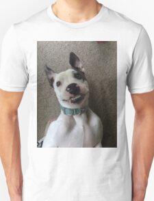Silly Pitbull T-Shirt