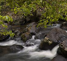 Mungalli Rapids by AnnieD