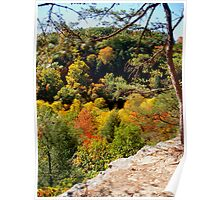 Autumn View from Rim Trail Poster