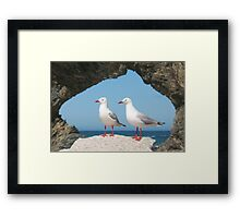 Birds in Australia Framed Print