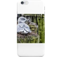Sitting Tight iPhone Case/Skin