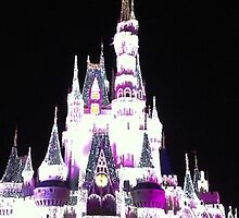 Cinderella's Castle in December by jrhall19