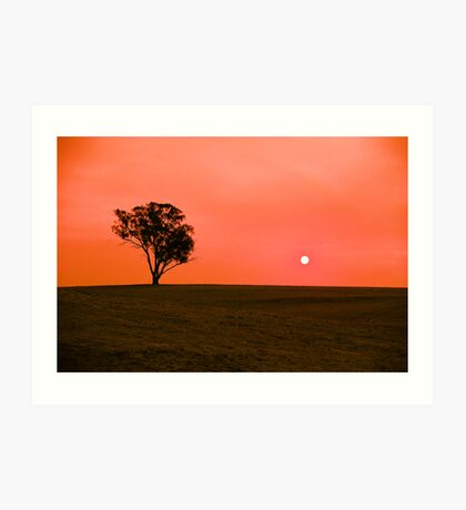 Drought sunset Art Print