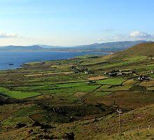Along The Kerry Way Ireland by aidan  moran