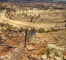 Murrumbidgee drought by Bernadette Maurer