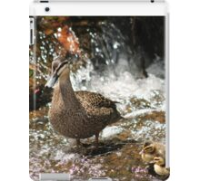 Duck Family iPad Case/Skin