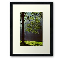 Ode to Life Framed Print