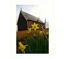 Early daffodils Art Print