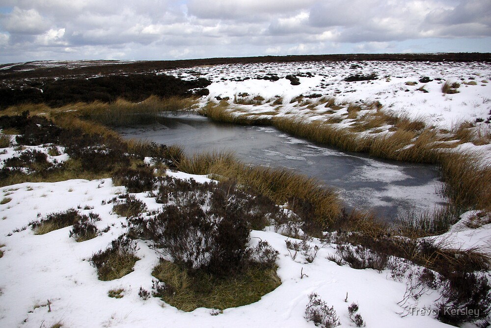 The Moors in Winter by Trevor Kersley