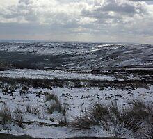 Rosedale in Winter by Trevor Kersley