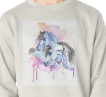 Blue Arabians Pullover