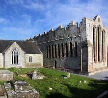 Ardfert Cathedral by Callanan