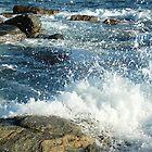 Sea Spray by Shelley Karutz