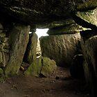 Ancient Ireland by David O'Riordan