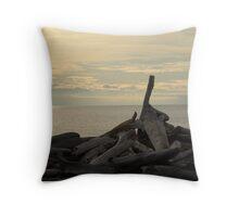 South Beach, San Juan Islands Throw Pillow