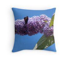 Butterfly on the Buddleja Throw Pillow