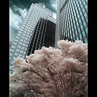 Seattle by IR by psychedelicmind