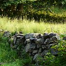 Stone Wall by artgoddess