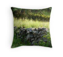 Stone Wall Throw Pillow