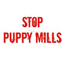 Stop Puppy Mills (Red Logo) Photographic Print