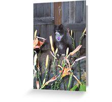 Hunter Cat Greeting Card