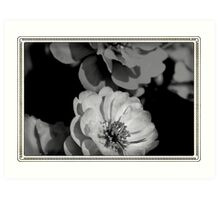 Dreaming in Black and White Art Print