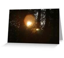 And God made the sun, to shine upon the earth.... Greeting Card