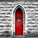 The Red Door by Nori Bucci