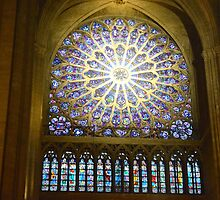 Stained Glass Notre Dame  by gettrippy