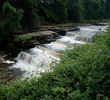 Aysgarth falls..... the middle bit! by dougie1