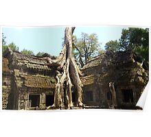 Ta Prohm Temple Poster