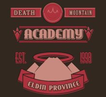 Legend of Zelda - Death Mountain Academy by B-Shirts