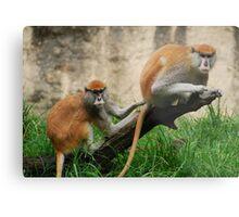 Houston Primates Metal Print