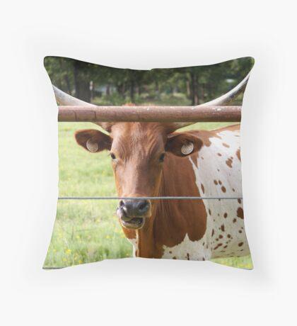 Hungry Longhorn Throw Pillow