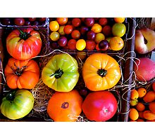 Season Harvest Photographic Print