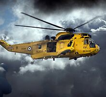 Sea King Saviour  by J Biggadike