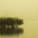 Fog on the Lake by Elana Halvorson