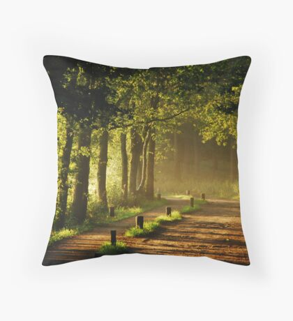 Enjoying the morning sun Throw Pillow