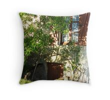 Coux Throw Pillow