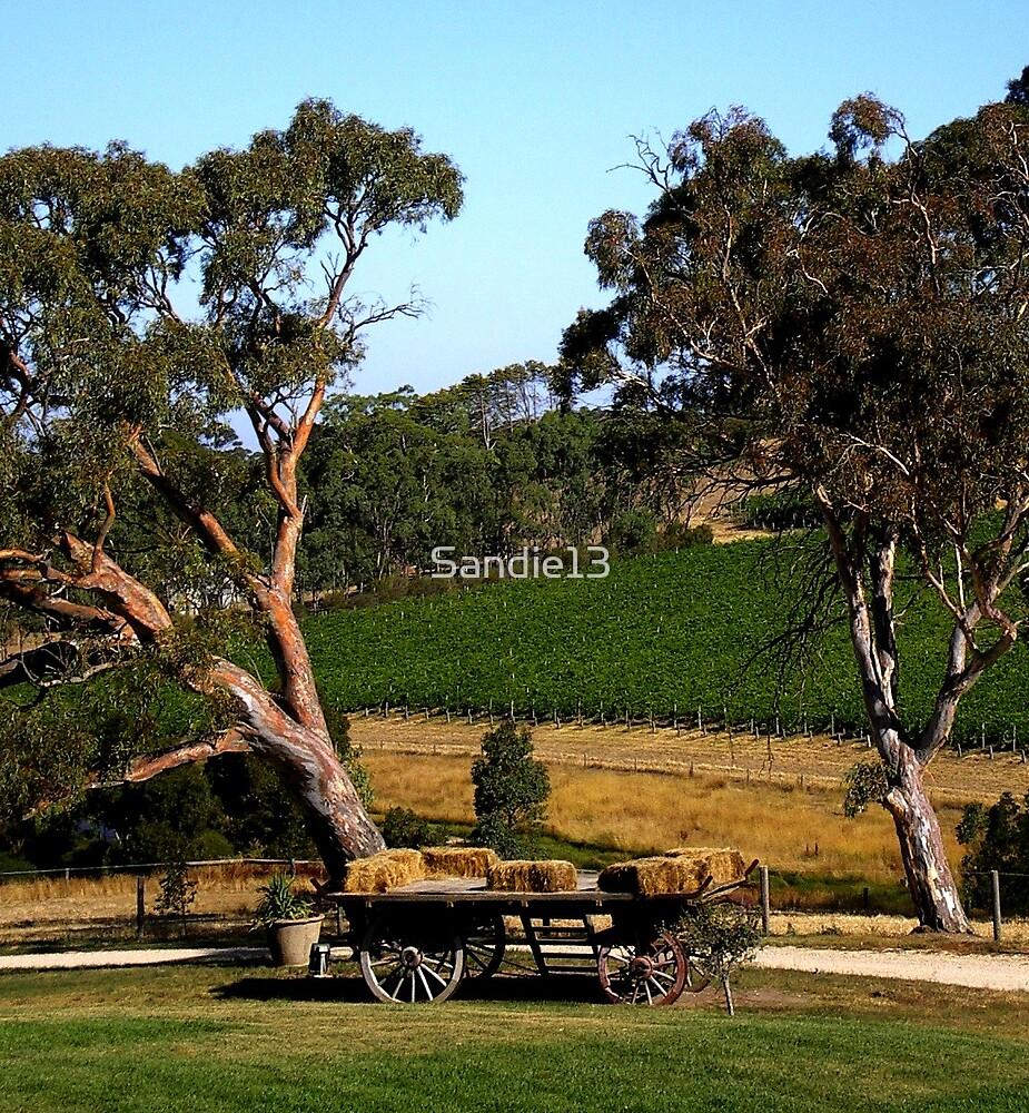 Longview Winery by Sandie13