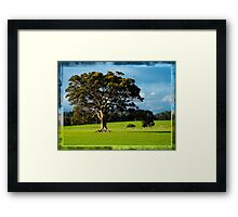 Ancient Limbs Framed Print