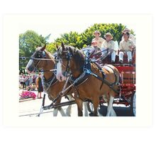 clydesdales on parade Art Print