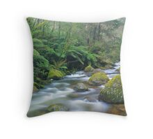 taggerty river Throw Pillow