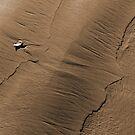 Ebb tide patterns by Duncan Waldron