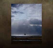 Long voyage home by douwe