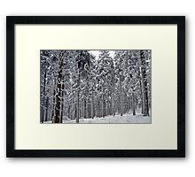 Frozen giants Framed Print