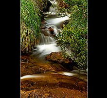 Lesmurdie Falls II by Kirk  Hille