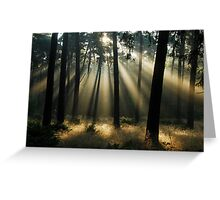 Looking for the morning ghosts Greeting Card